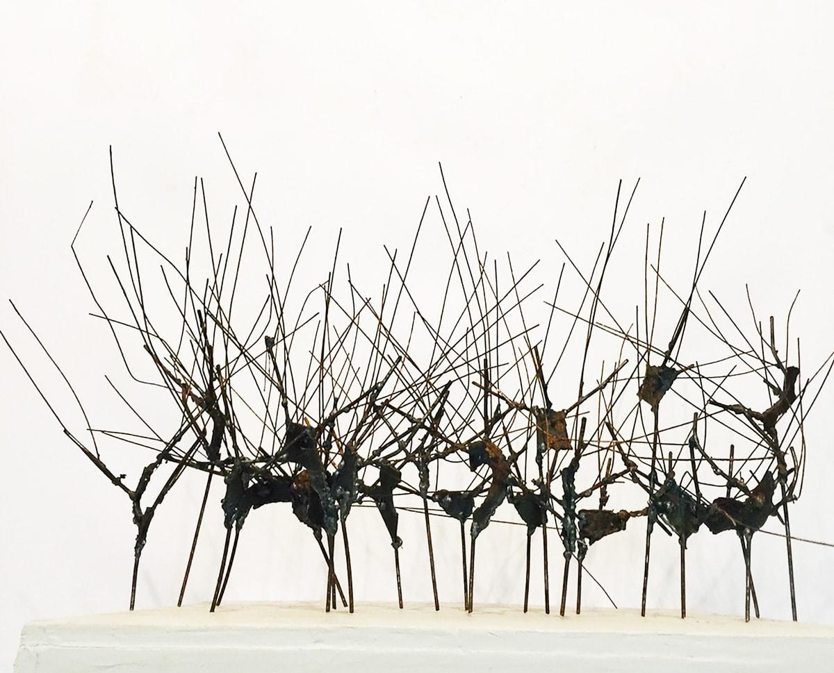 werk van Hannah Blom